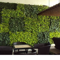 Vertical Garden / Green Wall